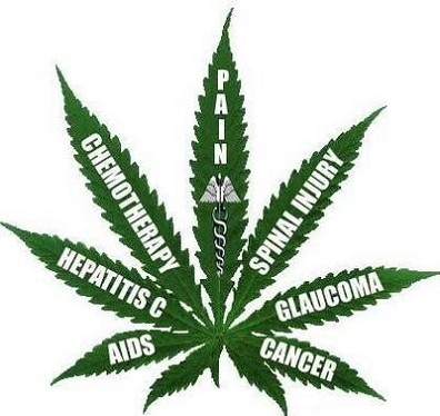the use of cannabis in medicine and its interpretation from the bible The catholic church and medical marijuana by theweedblog feb 19, 2012 of course, the bible does not teach against the use of herbs in the book of genesis.