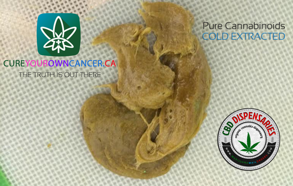 Cannabis Oil Gastric Cancer